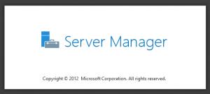 Image d'accueil du gestionnaire de serveur